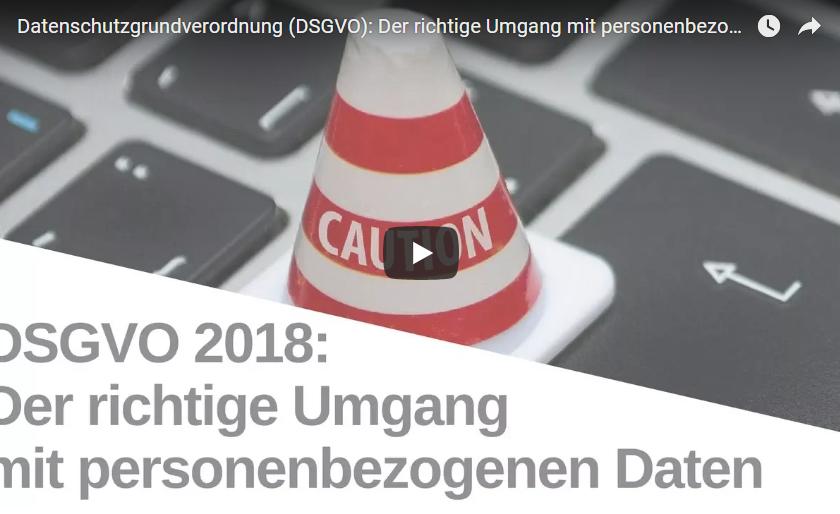 DVGSO-Video